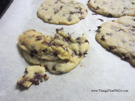 thingsthatwedo.com - chocolate chip ice cream sandwiches
