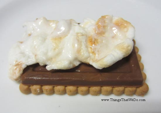 thingsthatwedo.com pic - simple smores